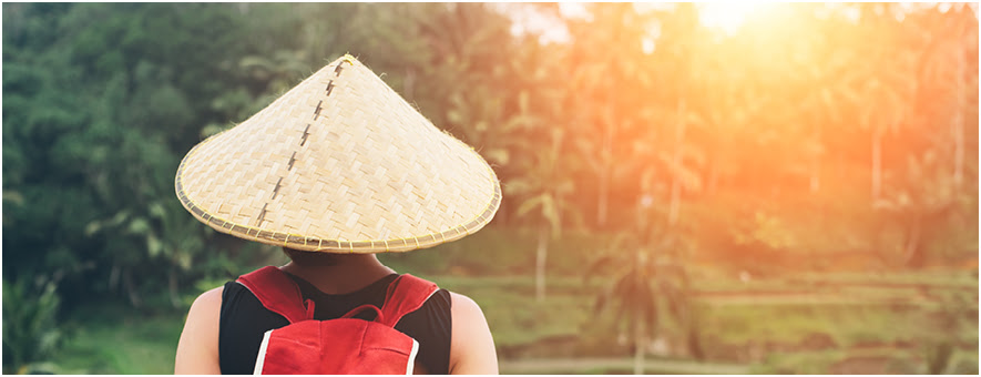 Travel trends of South East Asian travellers
