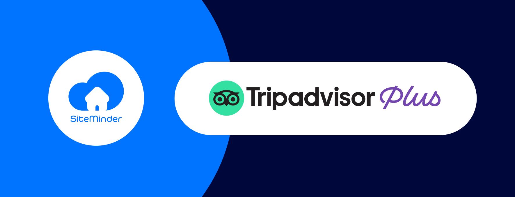 Tripadvisor-Plus-announcement-website